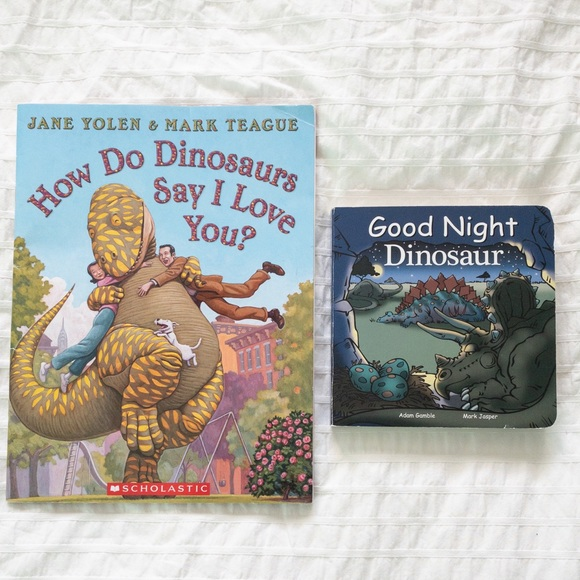 🦕Lot of 2 DINO books🦖